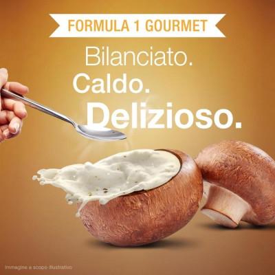 Formula 1 Gourmet Gusto crema di funghi 550 g